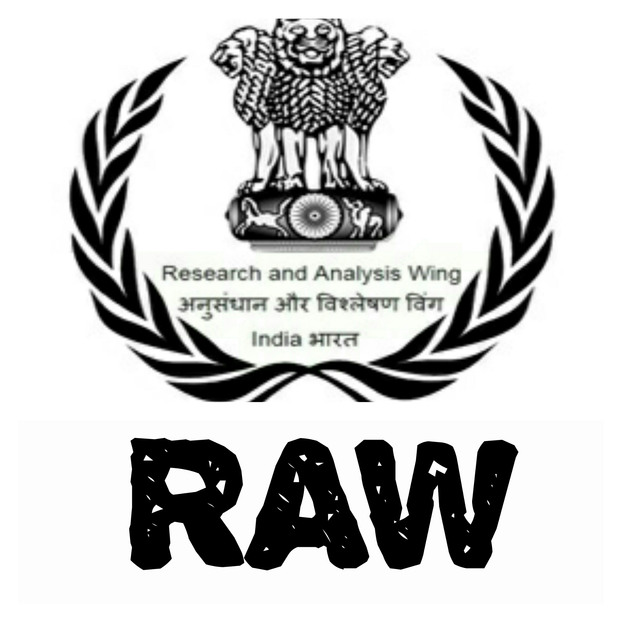 Image result for RAW AGENCY